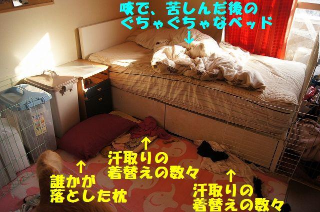 3_20130119070435.jpg
