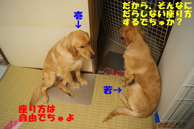 4_20120430000350.jpg