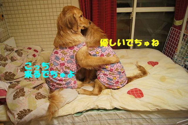 4_20120504013009.jpg