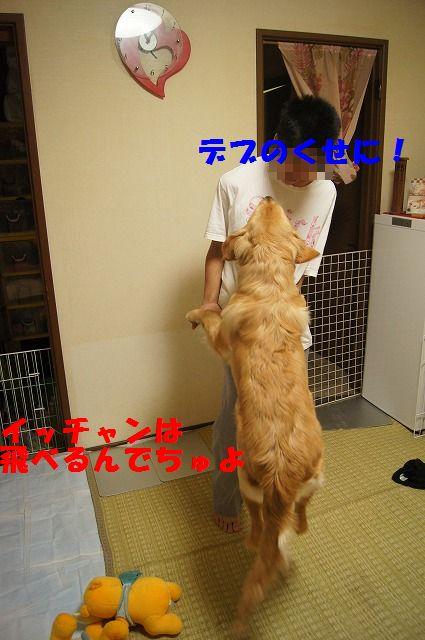 4_20120507014056.jpg