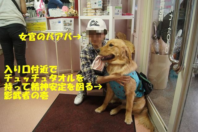 4_20120516194834.jpg