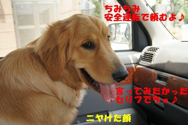 4_20120607234016.jpg