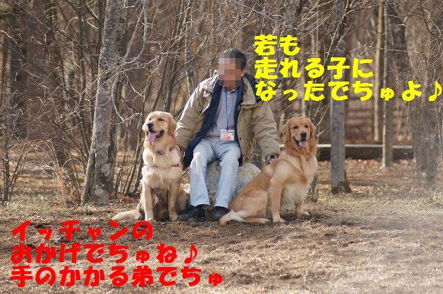 4_20121226041113.jpg