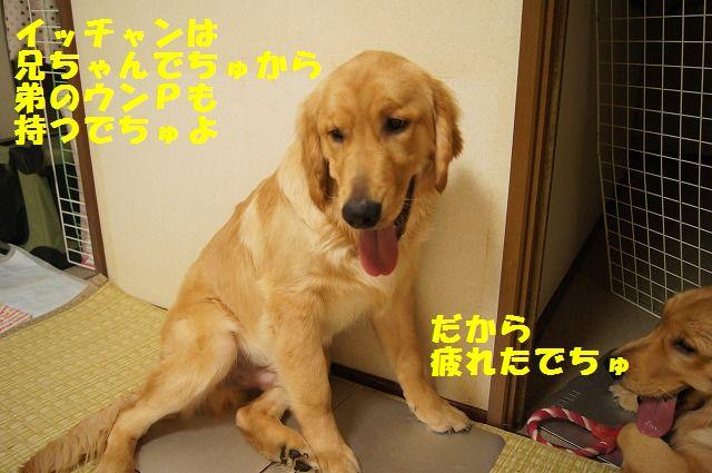 5_20120430000349.jpg