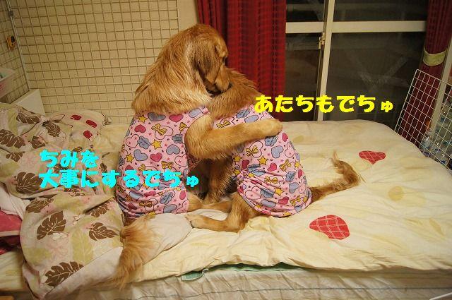 5_20120504013008.jpg