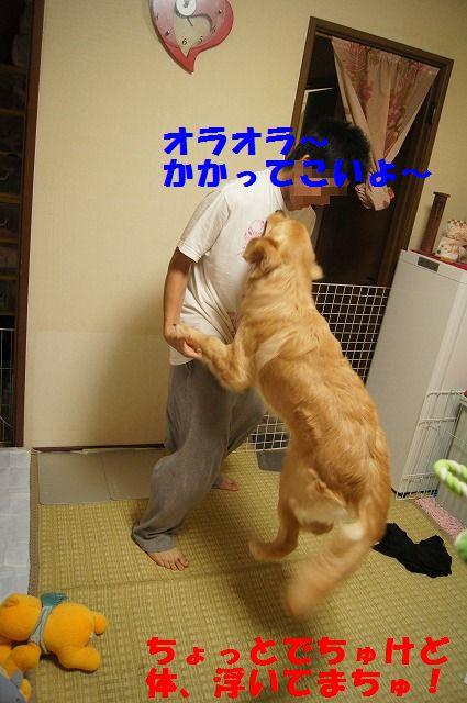 5_20120507014055.jpg