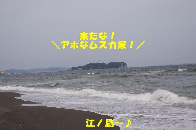 5_20120607234015.jpg