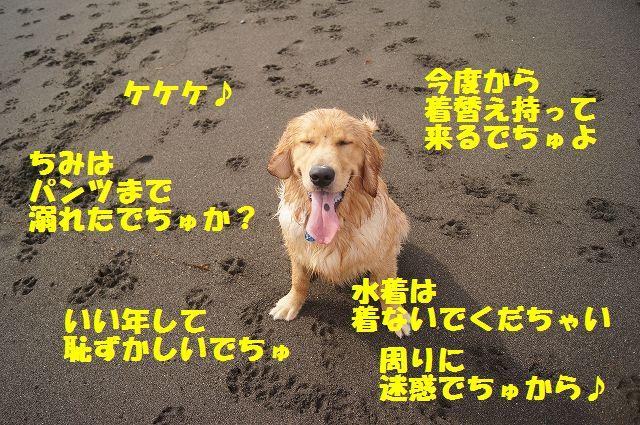 5_20120608011743.jpg