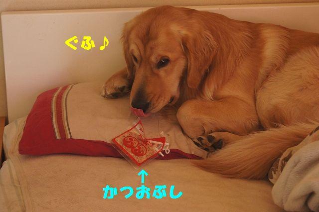 5_20130119070437.jpg