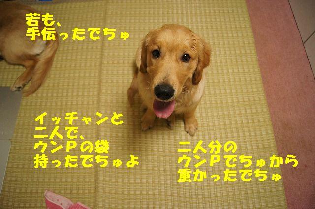 6_20120430000348.jpg
