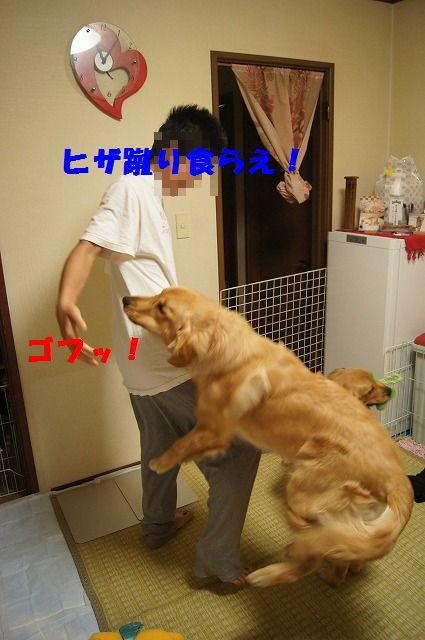 6_20120507014054.jpg