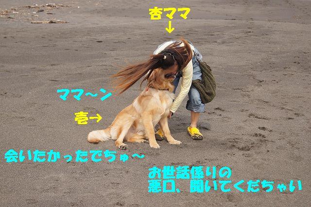 6_20120607234015.jpg