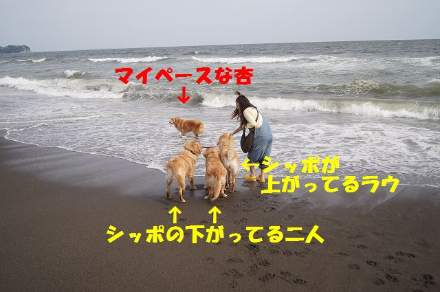 6_20120608003354.jpg