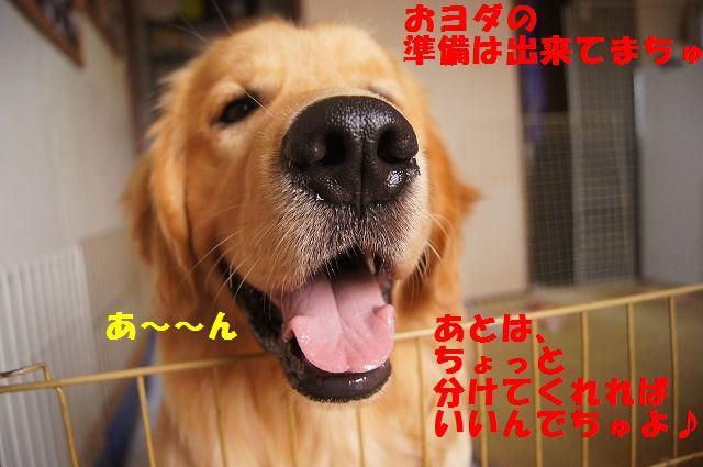 6_20120613232528.jpg