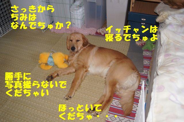 6_20120616195705.jpg