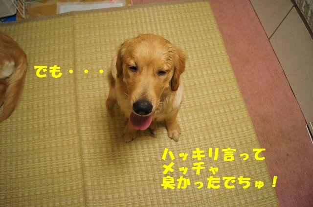 7_20120430000419.jpg