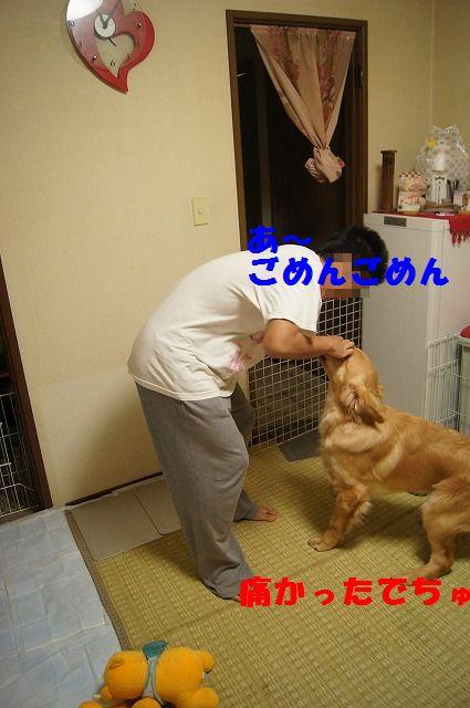7_20120507014221.jpg