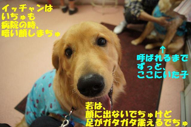 7_20120516194847.jpg