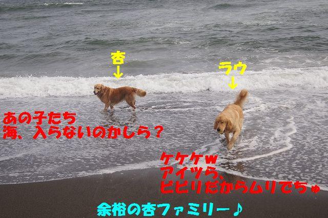 7_20120607234041.jpg