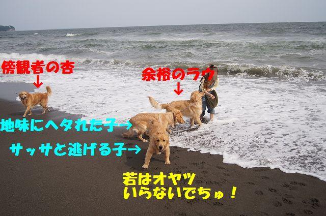 7_20120608003421.jpg