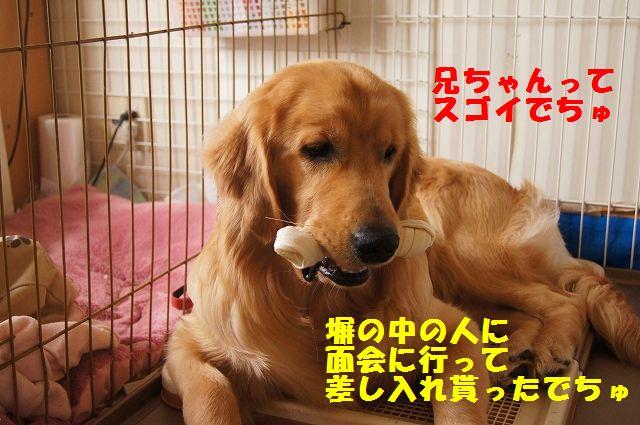 7_20120611202344.jpg