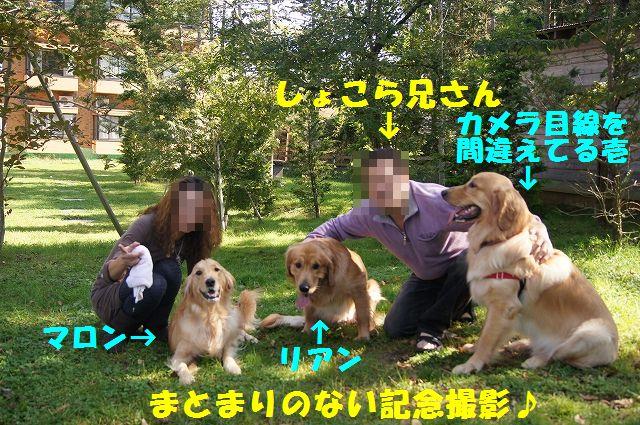 7_20121029101558.jpg