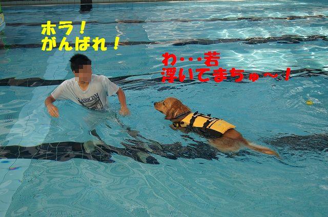 7_20121121031959.jpg