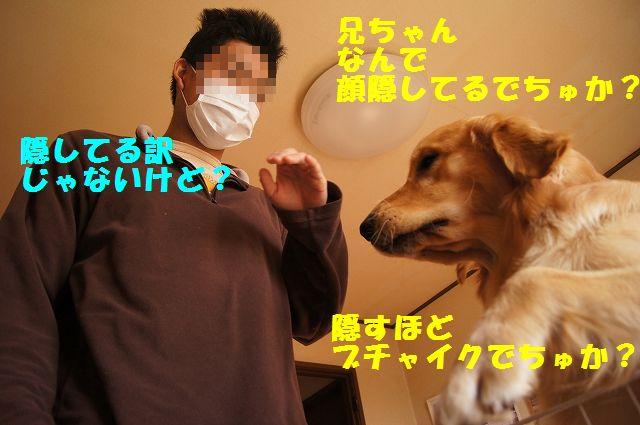 7_20130116171605.jpg