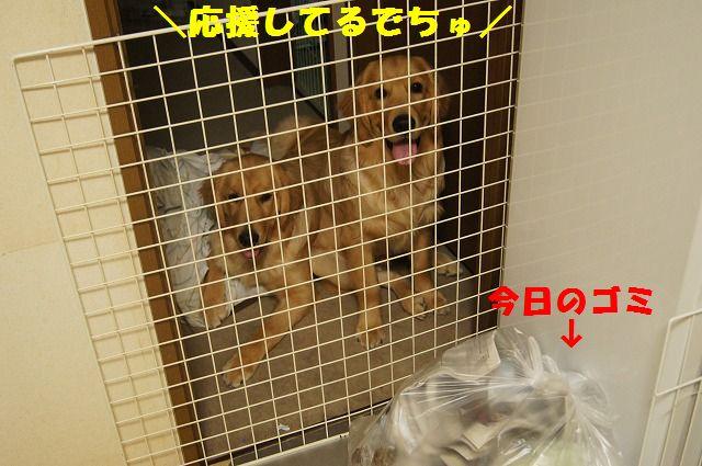 8_20120509214137.jpg