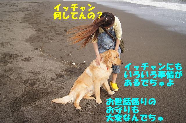 8_20120607234040.jpg