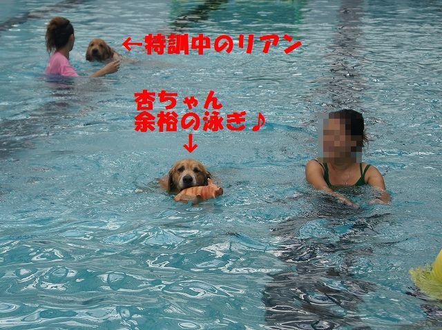 8_20121029044536.jpg