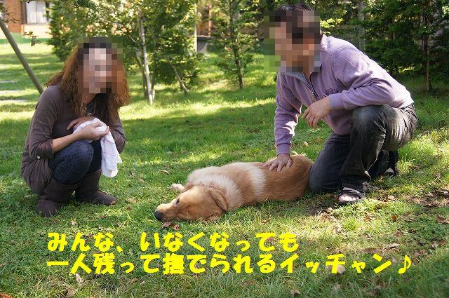 8_20121029101558.jpg