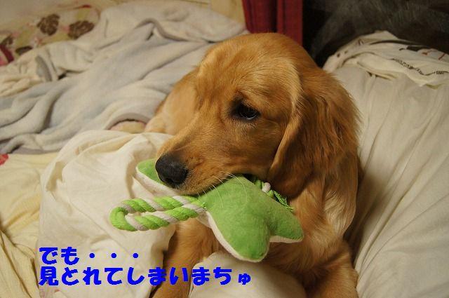 9_20120507014219.jpg