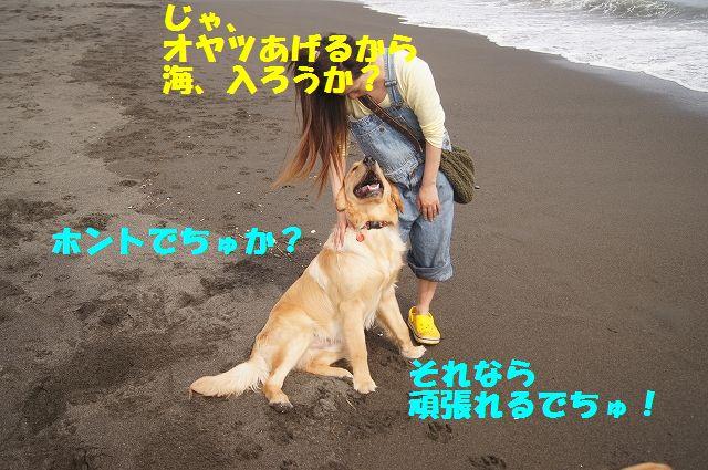 9_20120607234039.jpg