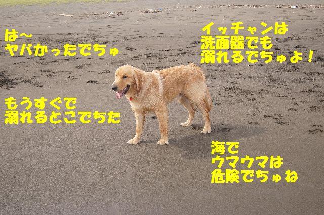 9_20120608003420.jpg
