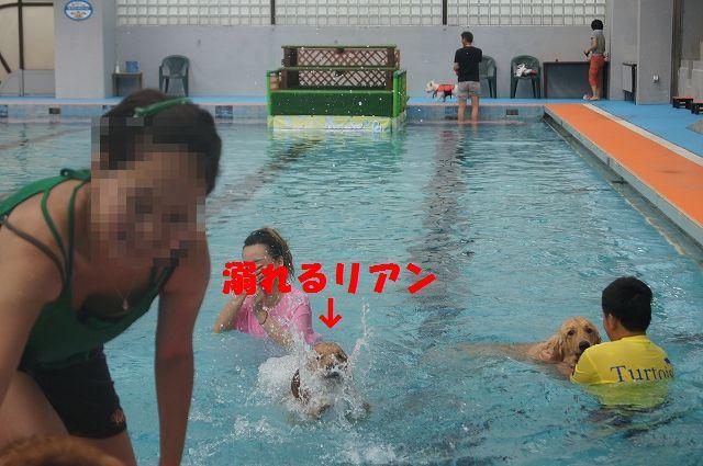 9_20121029044536.jpg