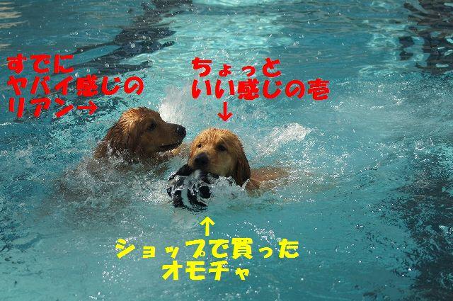 9_20121029101557.jpg