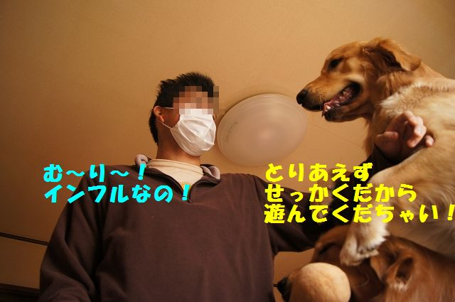 9_20130116171608.jpg