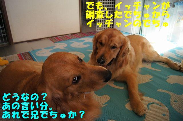 9_20130119070457.jpg