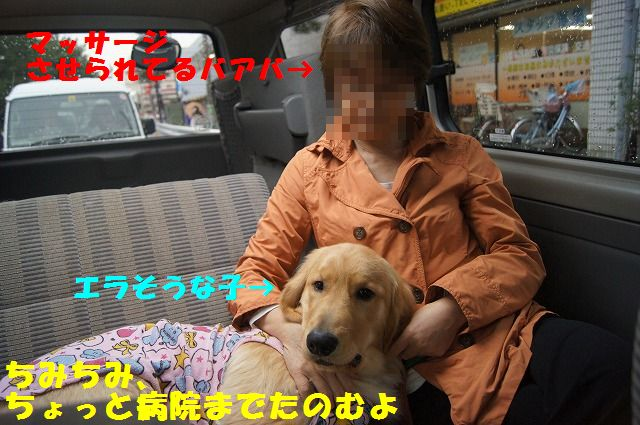 DSC09704_20120420203747.jpg