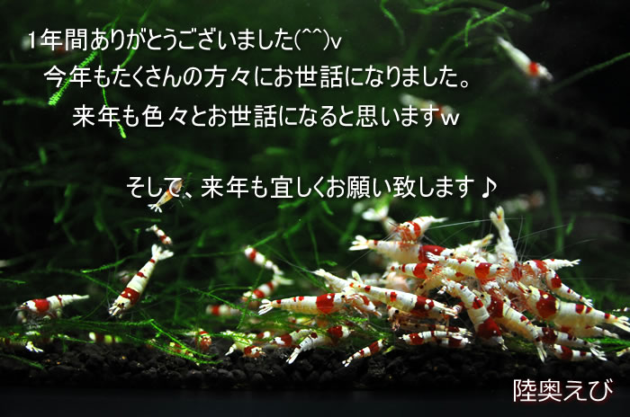 DSC_9843.jpg