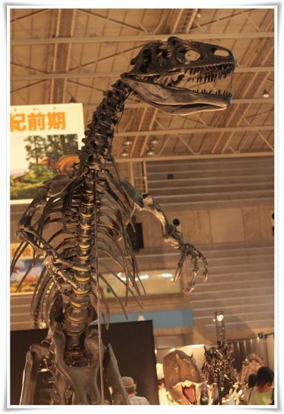恐竜展&アンパンマンミュージアム