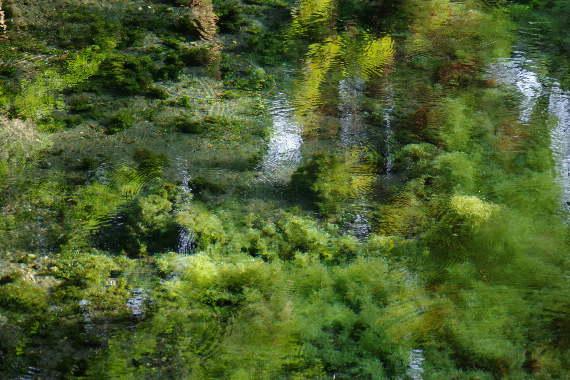 美しき白川水源4