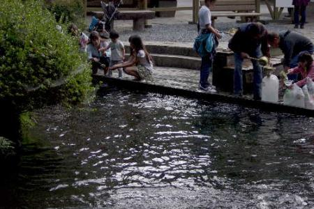 美しき白川水源7