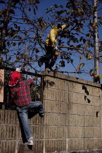 癒しの「やまくにかかしワールド」2012~子どもワールドその21