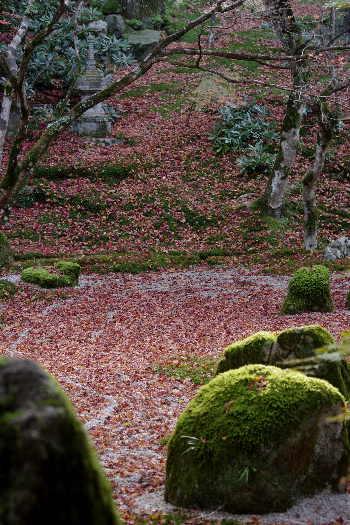 太宰府光明寺の紅葉 4
