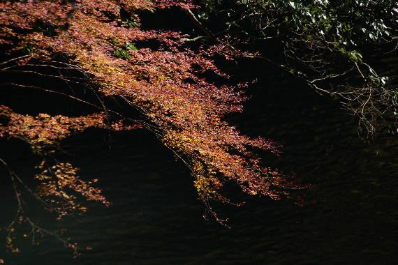 錦秋・高千穂峡~3 1