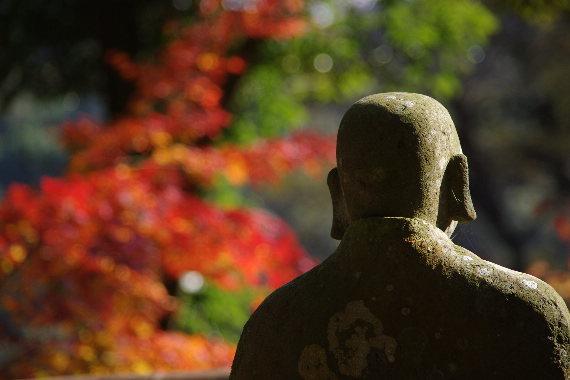 2012・最後の紅葉は永勝寺 9