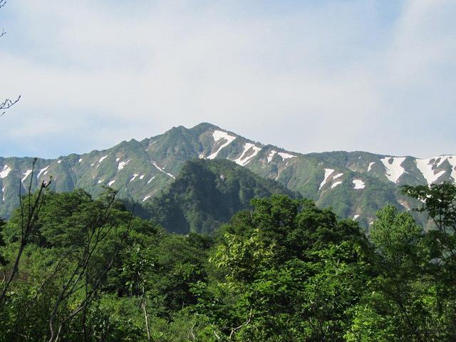 登山道から見上げる荒沢岳と手前の前