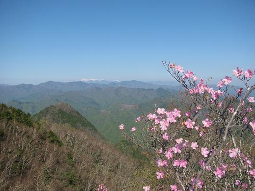 八ケ岳を望む